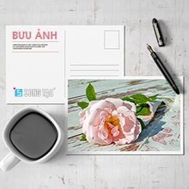 In bưu ảnh - rửa ảnh giá rẻ - thiết kế ảnh online - in bưu ảnh giá rẻ